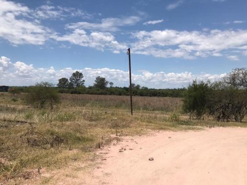 Campos y Chacras en Alquiler en Los Arrayanes, Soriano