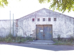 Otras propiedades en Alquiler en Albisu, Salto