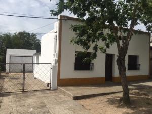 Casas y Apartamentos en Alquiler en Trinidad, Flores