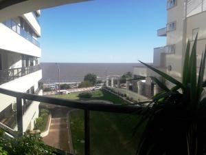 Apartamentos en Alquiler en Malvín, Montevideo