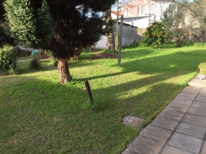 Casas en Alquiler en Punta Gorda, Montevideo, Montevideo