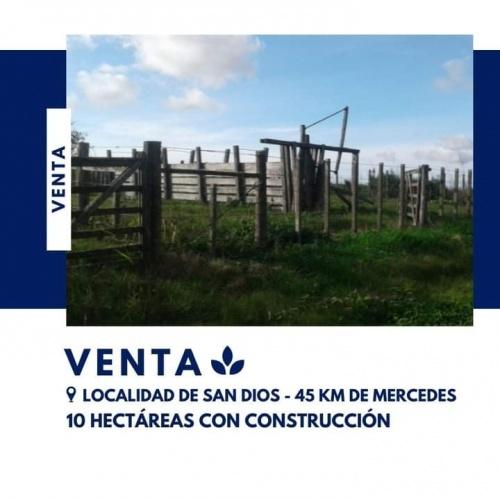 Campos y Chacras en Venta en Otras localidades, Soriano