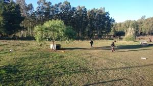 Chacras y Quintas en Venta en Paraje Pense, Soriano