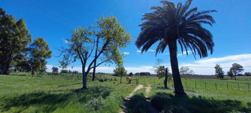 Terreno enen Santa Catalina