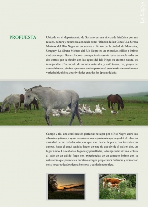 Campo / Chacra en Venta en Otras localidades, Soriano