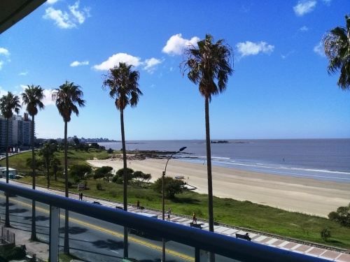 Apartamentos en Venta - Alquiler en Buceo, Montevideo