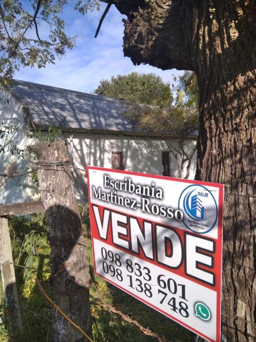 CAMPOS y CHACRAS en Venta en PENSE, Mercedes, Soriano