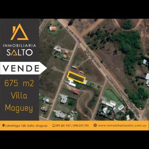 Terrenos en en Villa Maguey, Salto