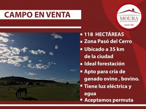 Campos y Chacras en Venta en Paso del Cerro, Tacuarembó