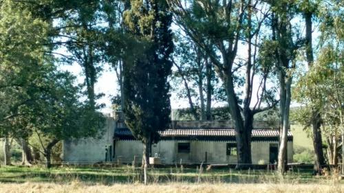 Campo / Chacra en Venta en Young, Río Negro