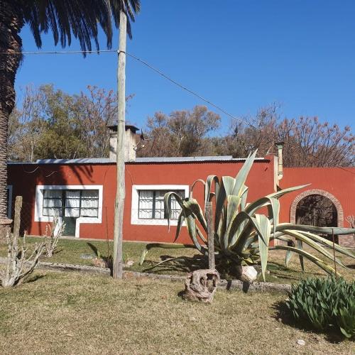 Campo / Chacra en Venta en Punta De Arroyo Negro, Paysandú