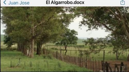 Campo / Chacra en Venta en Guayabos, Paysandú