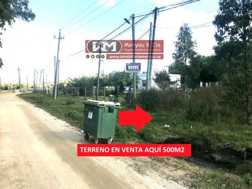 Terrenos en Venta,  Alquiler en Barrio Ribot, Trinidad, Flores