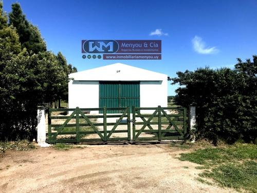 Campos y Chacras en Venta en Trinidad, Flores