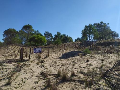 Loteo en Venta en La Viuda Sur, Punta del Diablo, Rocha