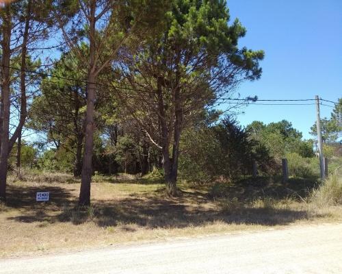 Terrenos en Venta en Bosque de La Viuda, Punta del Diablo, Rocha