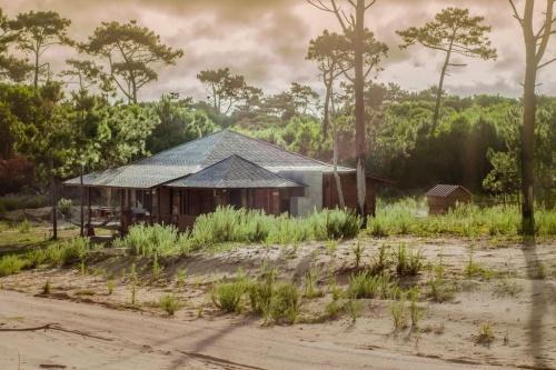 Casas en Venta en La Viuda, Punta del Diablo, Rocha