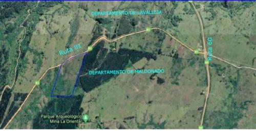 Campos y Chacras en Venta en Limite Lavalleja y Maldonado, Minas, Lavalleja