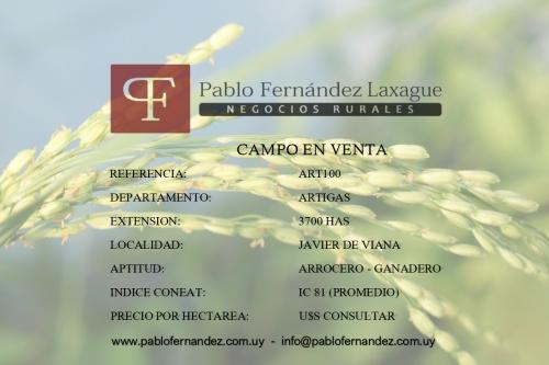 Campo / Chacra en Venta en Artigas, Artigas