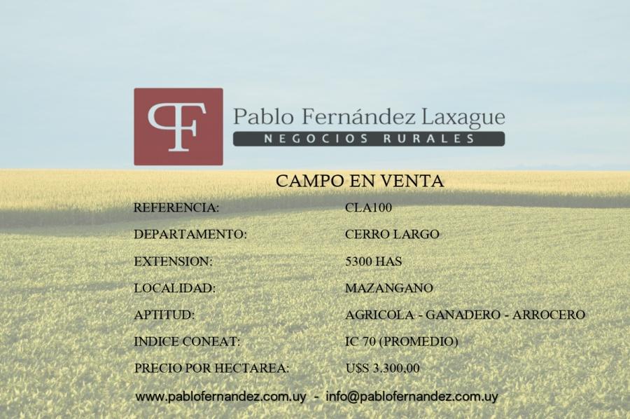 CERRO LARGO 5300 HAS - AGRICOLA / GANADERO / ARROCERO