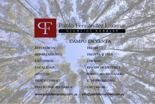 Campos 1000 a 2000 has en Venta en Rincón De Urtubey, Treinta y Tres