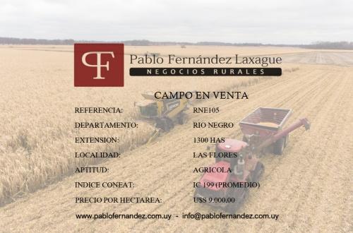 Campo / Chacra en Venta en Las Flores, Río Negro