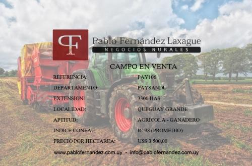 Campos 2000 a 4000 has en Venta en Queguay Grande, Paysandú
