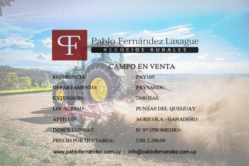 Campos 2000 a 4000 has en Venta en Puntas De Queguay, Paysandú