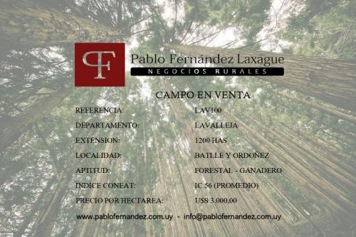 Campo / Chacra en Venta en José Batlle y Ordóñez, Lavalleja