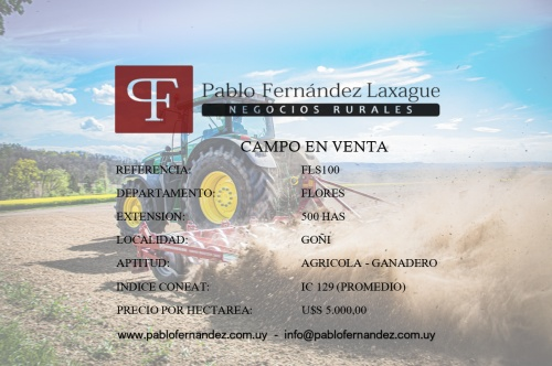 Campo / Chacra en Venta en Goñi, Flores