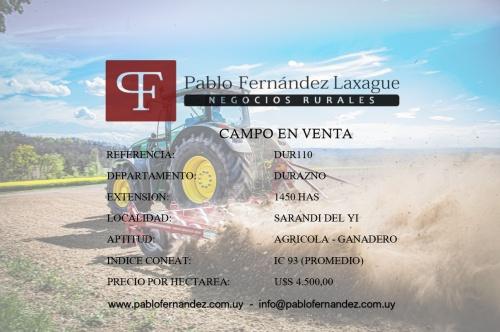 Campo / Chacra en Venta en Sarandí del Yí, Durazno