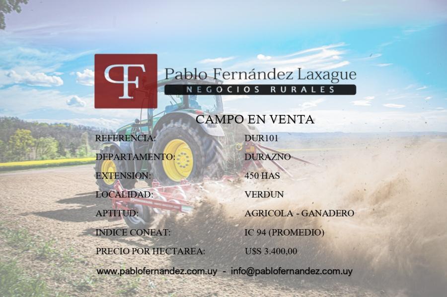 DURAZNO 450 HAS - AGRICOLA / GANADERO
