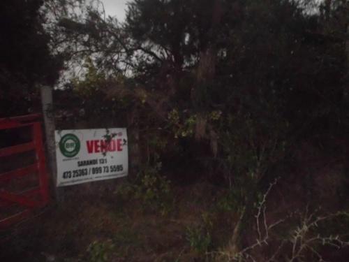 Campos y Chacras en Venta en Salto