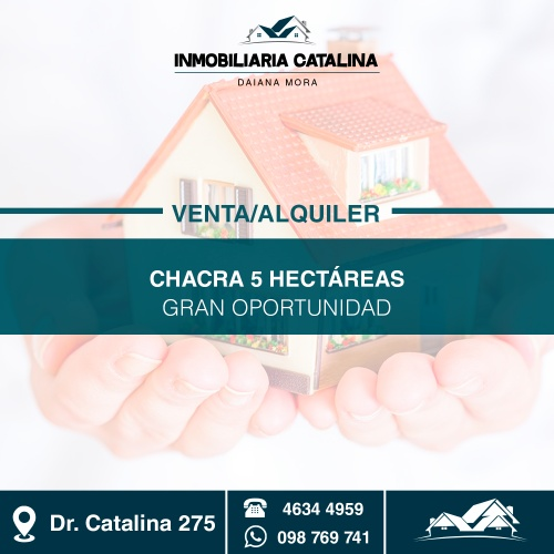 Campo / Chacra en Venta - Alquiler en Tacuarembó