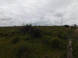 Campo / Chacra en Venta en Zapicán, Lavalleja