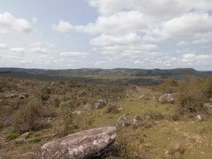Campo / Chacra en Venta en Barriga Negra, Lavalleja