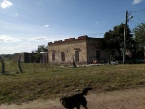 Campo / Chacra en Venta en Salto