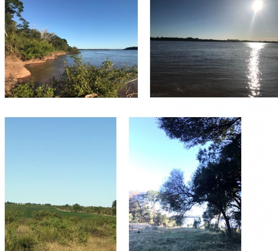 Campo con costa al Río Uruguay