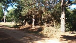 Terreno en Venta en Tacuarembó, Tacuarembó