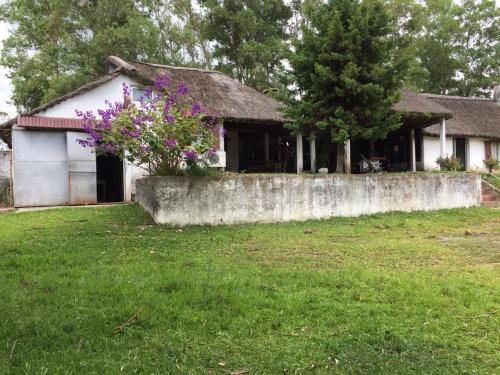 Casas en Venta en Barrio Godoy, Tacuarembó
