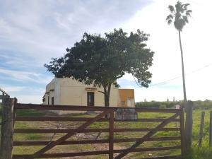 Campos y Chacras en Alquiler en PARAJE PENSE, Soriano