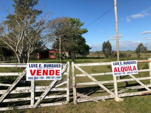 Campo / Chacra en Venta - Alquiler en Durazno , Durazno