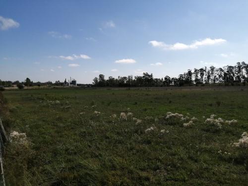 Campos y Chacras en Venta en Durazno , Durazno