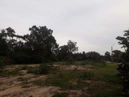 Terrenos en Venta en Punta del Este, Maldonado