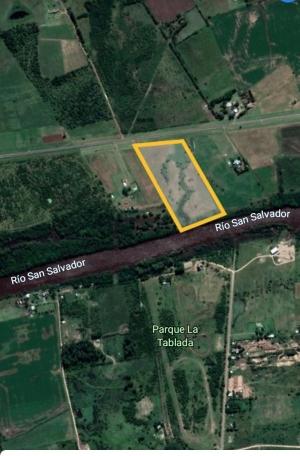 Campo / Chacra en Venta en Dolores, Soriano