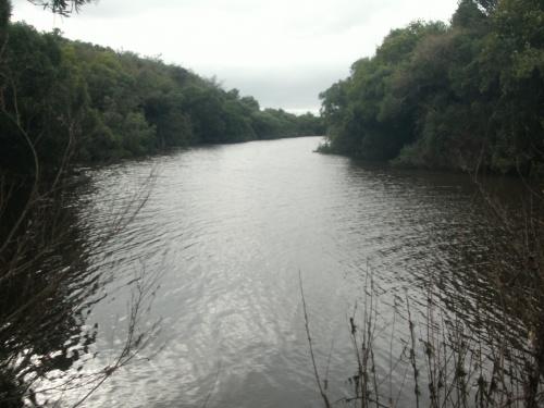 Campo / Chacra en Venta en Río Negro, Río Negro