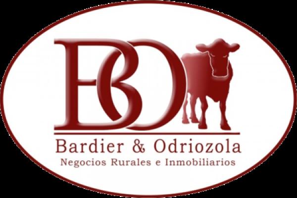 BARDIER & ODRIOZOLA SRL