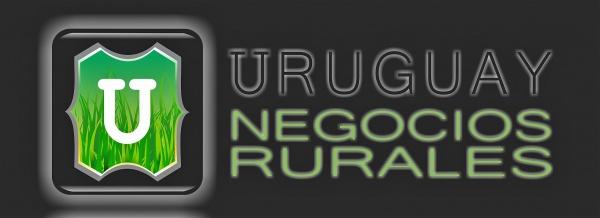 Uruguay Negocios Rurales