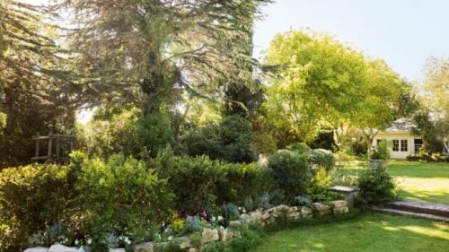 Consejos para comenzar un jardín
