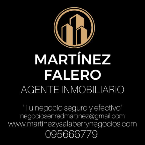 MARTINEZ FALERO Agente Inmobiliario